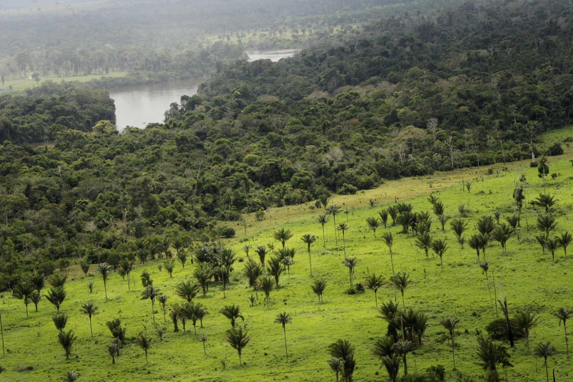 Accelerating The Transition Of Redd To Low Emission Rural