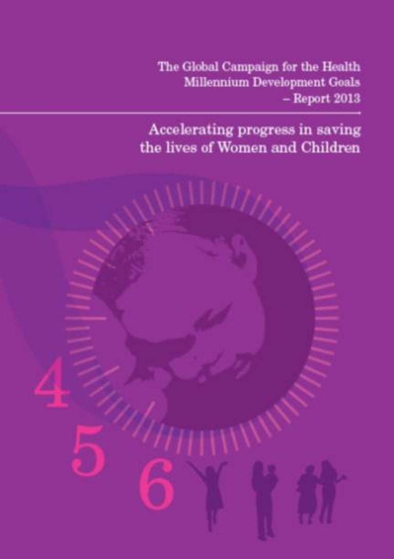 global campaign report 2013